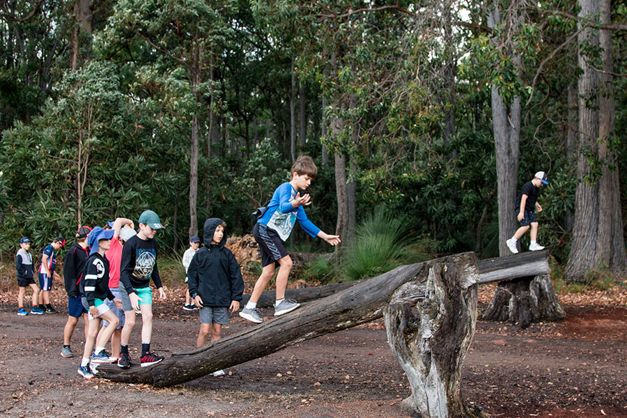 Dare Adventures Adventure Course Walking The Planks