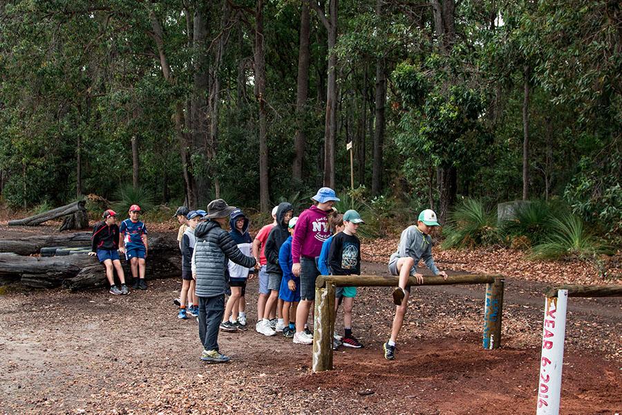 Dare Adventures Adventure Course Stump Jumping